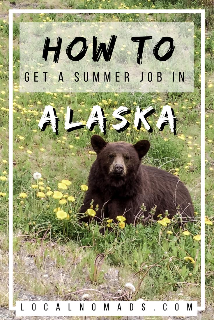 Alaska Summer Job