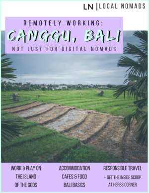 Remotely Working Canggu, Bali