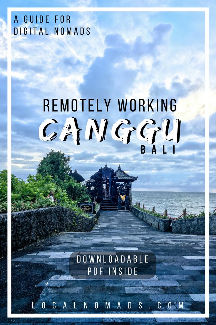 Canggu Bali Digital Nomads