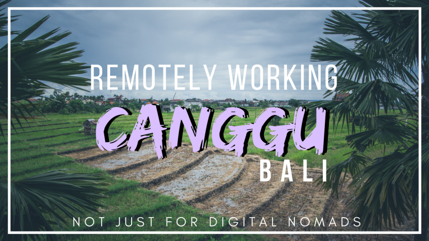 Canggu, Bali – A Local Guide for Digital Nomads