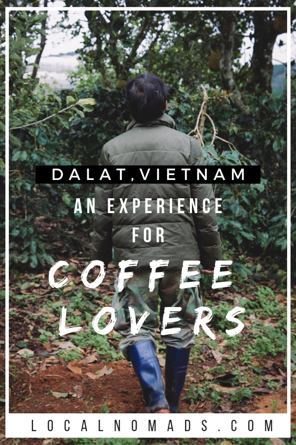 Photo of coffee farmer from behind. Text overlay: Dalat Vietnam, An experience for coffee lovers
