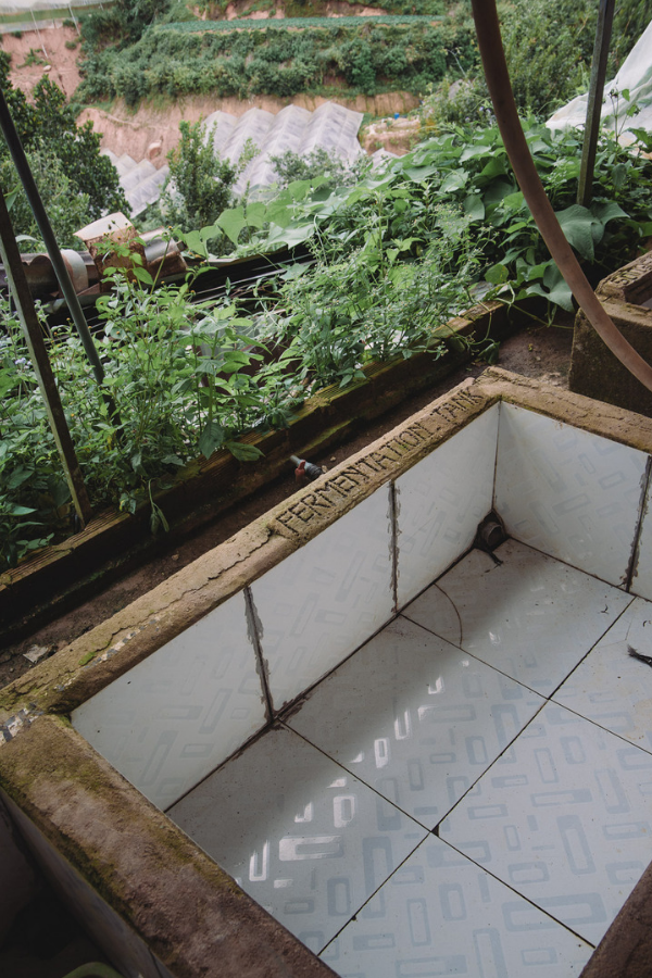 The fermentation tank at the Dalat coffee farm