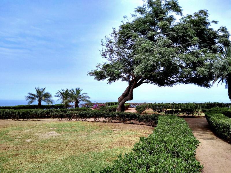 Lima Peru Garden