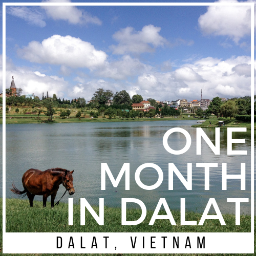 Guide to Living in Dalat City, Vietnam for 1 month
