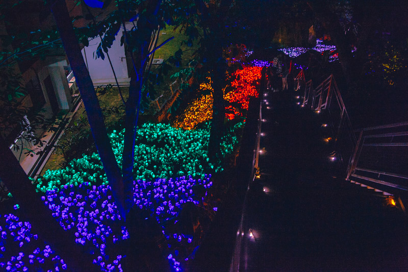We wanted until it was really dark to walk through the Asvatar Secret Garden