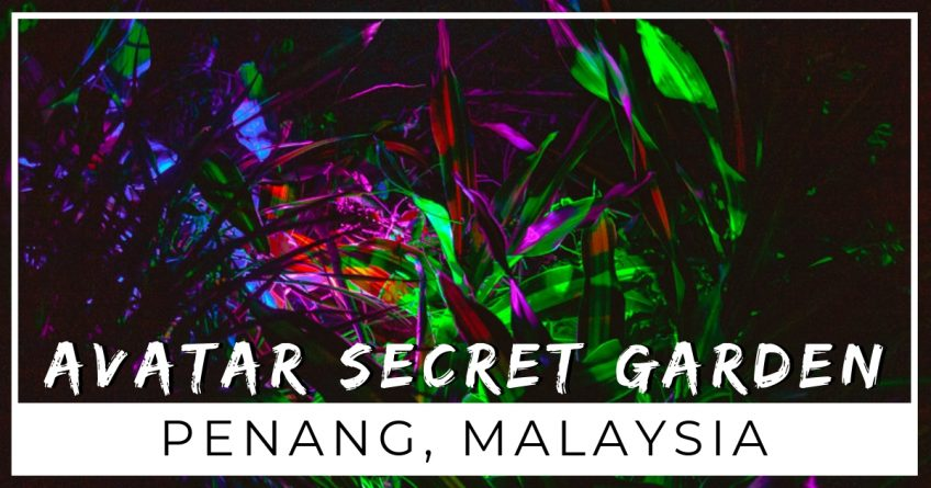How to visit the Secret Avatar Garden Penang, Malaysia
