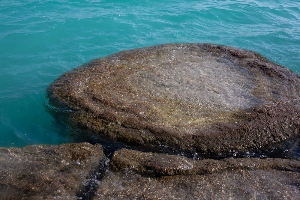Stromatolites in blue water