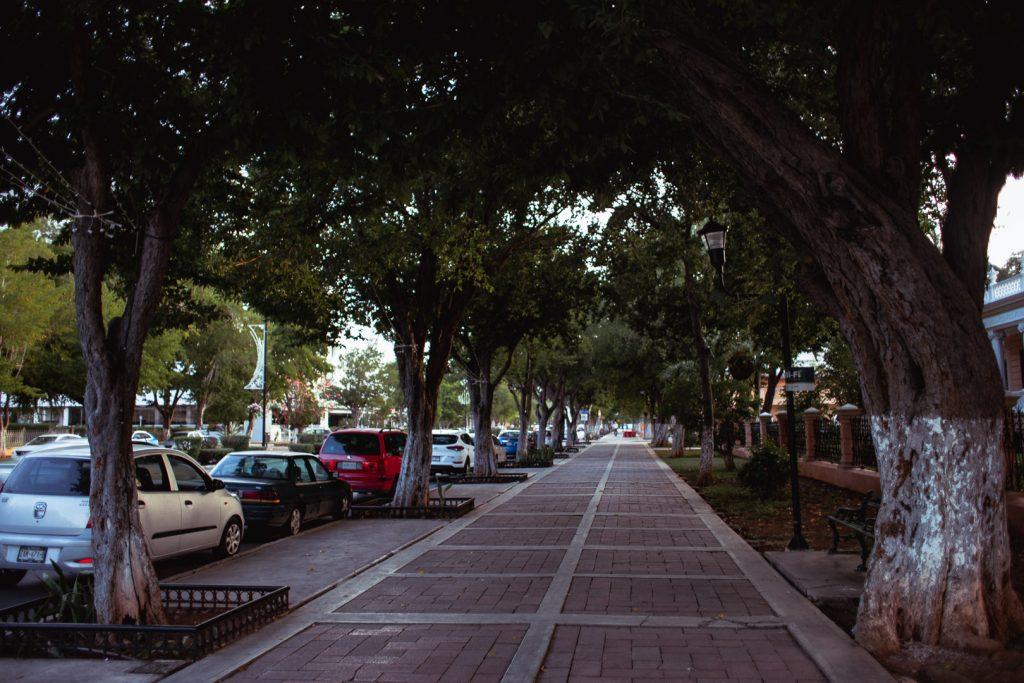 Sidewalks of the paseo montejo
